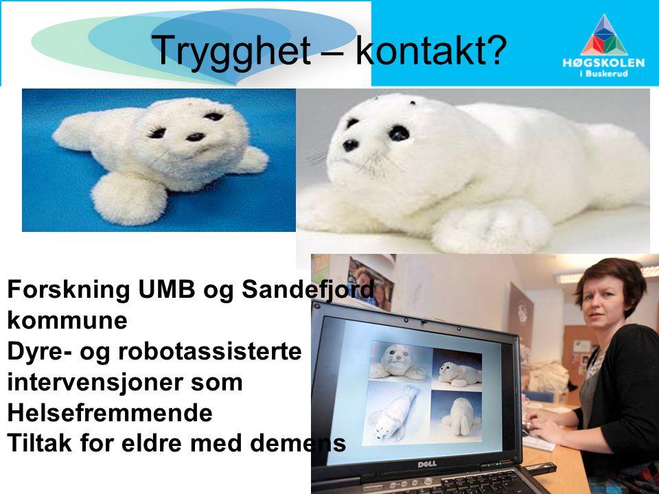 Trygghet – kontakt Forskning UMB og Sandefjord kommune