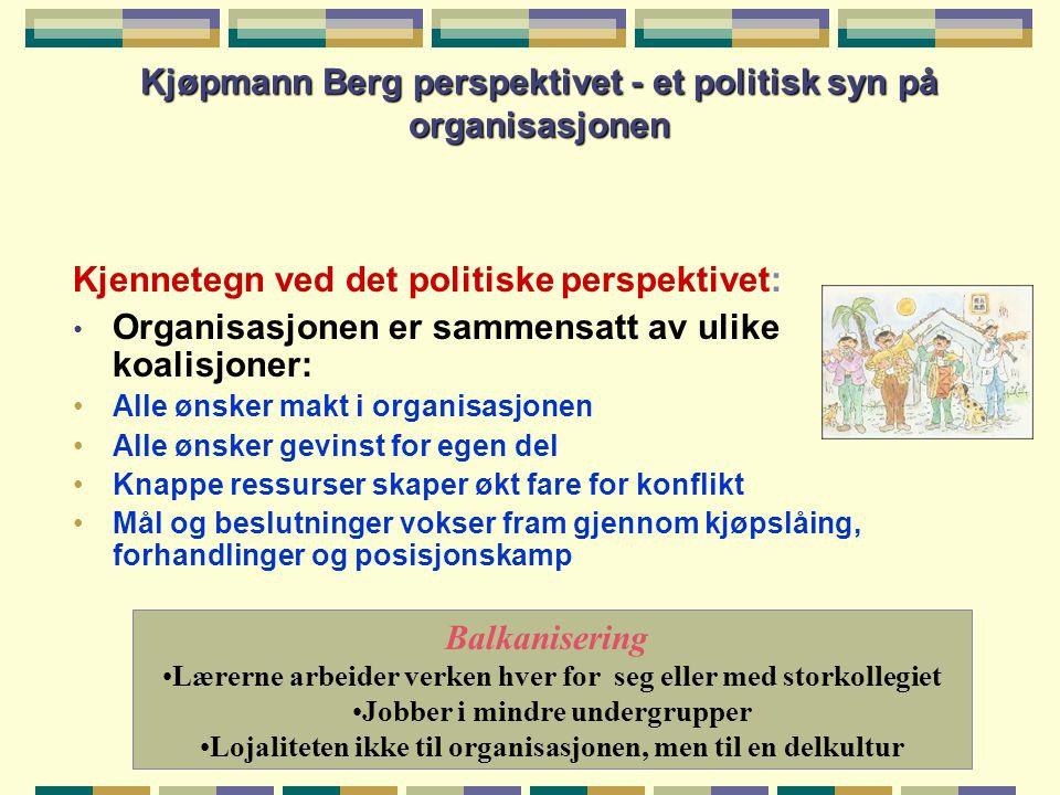 Kjøpmann Berg perspektivet - et politisk syn på organisasjonen