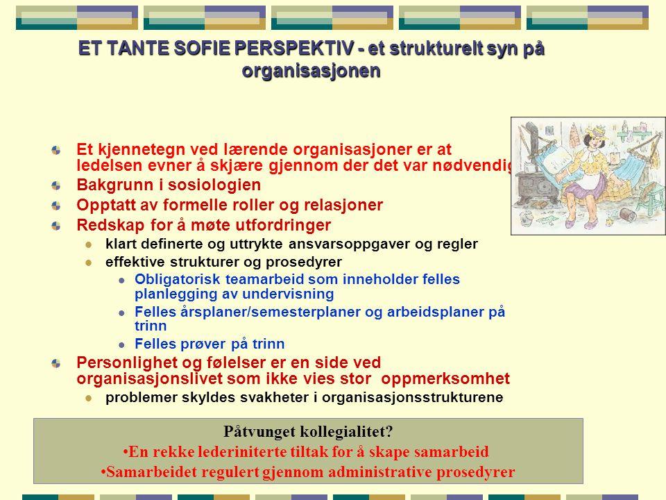 ET TANTE SOFIE PERSPEKTIV - et strukturelt syn på organisasjonen