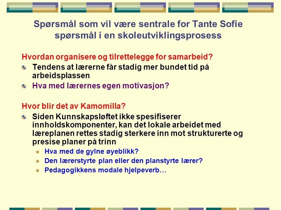 Spørsmål som vil være sentrale for Tante Sofie spørsmål i en skoleutviklingsprosess