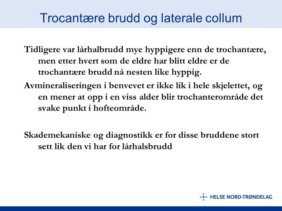 Trocantære brudd og laterale collum