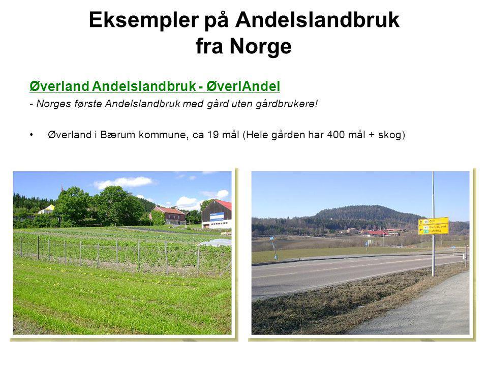 Eksempler på Andelslandbruk fra Norge