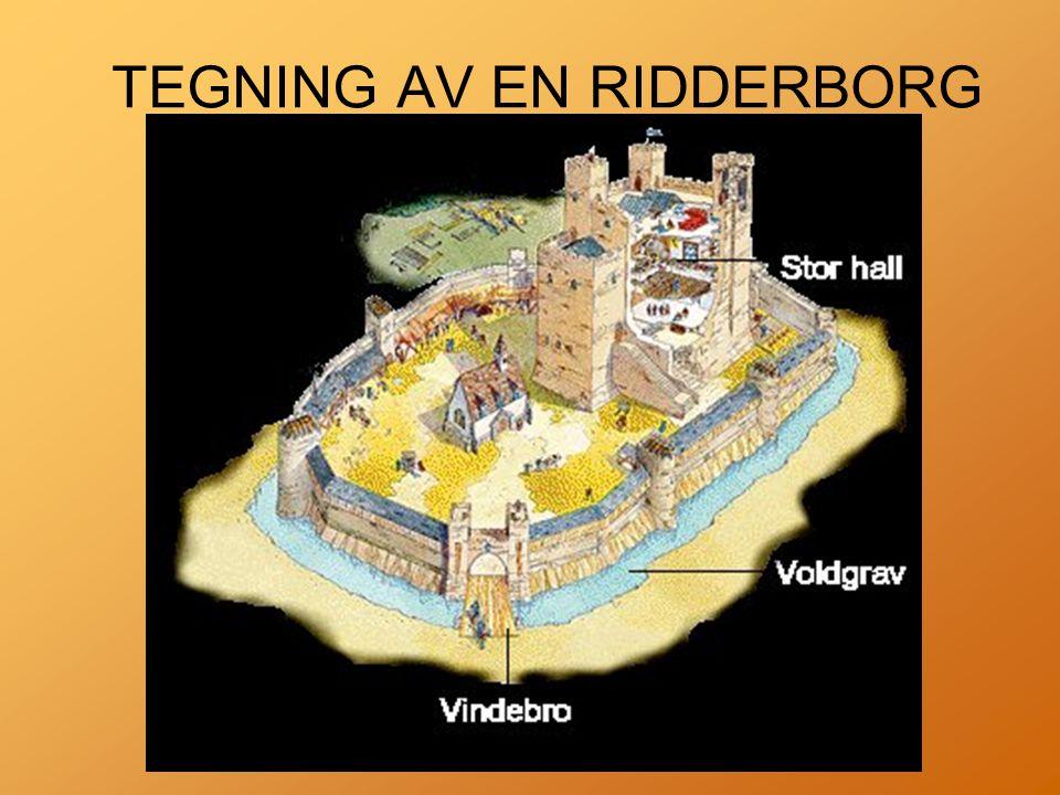 TEGNING AV EN RIDDERBORG