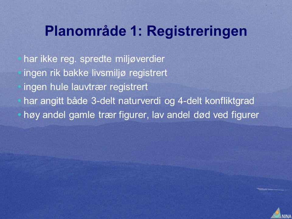 Planområde 1: Registreringen