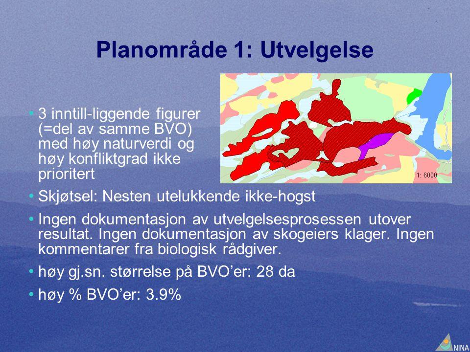 Planområde 1: Utvelgelse