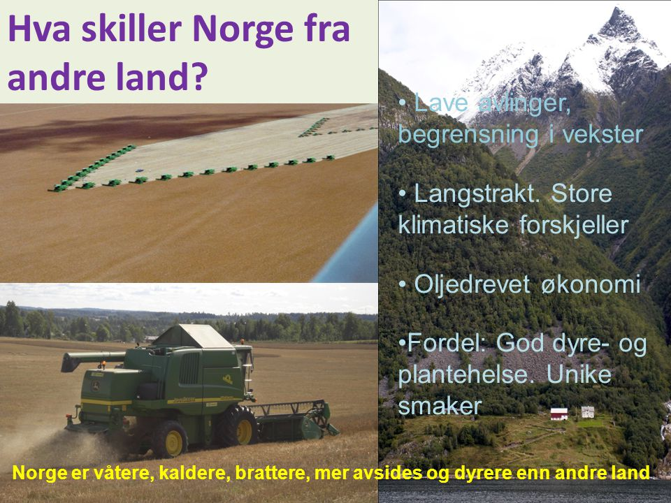 Hva skiller Norge fra andre land