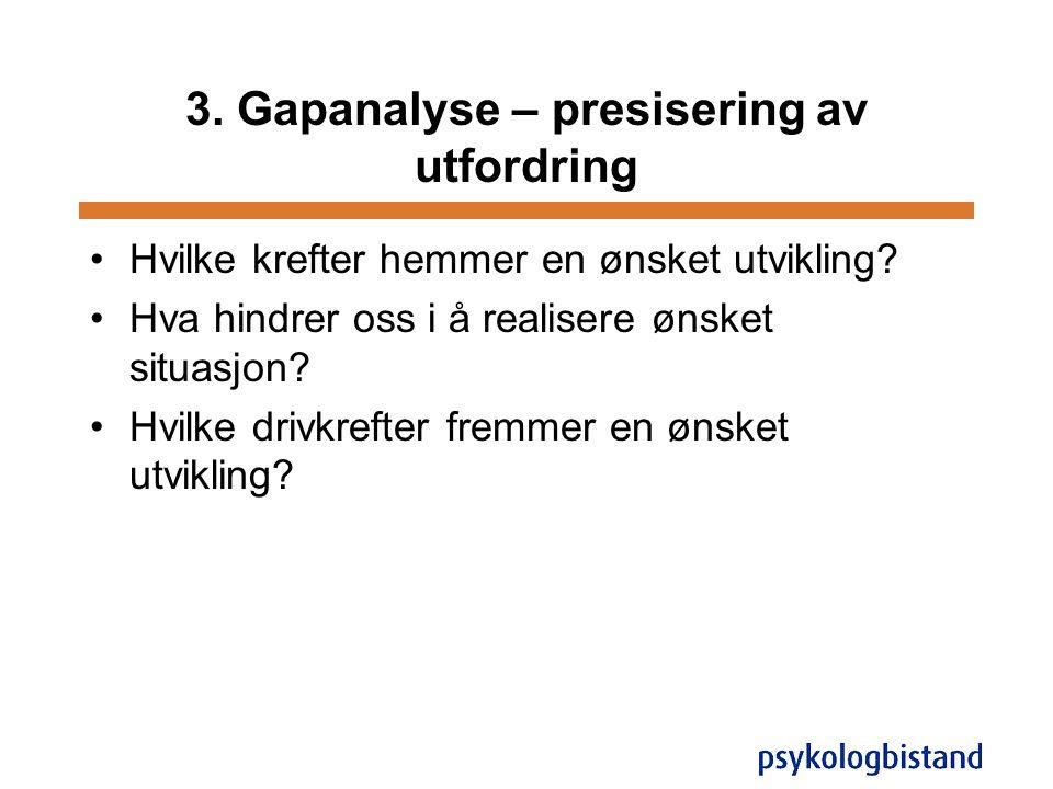 3. Gapanalyse – presisering av utfordring
