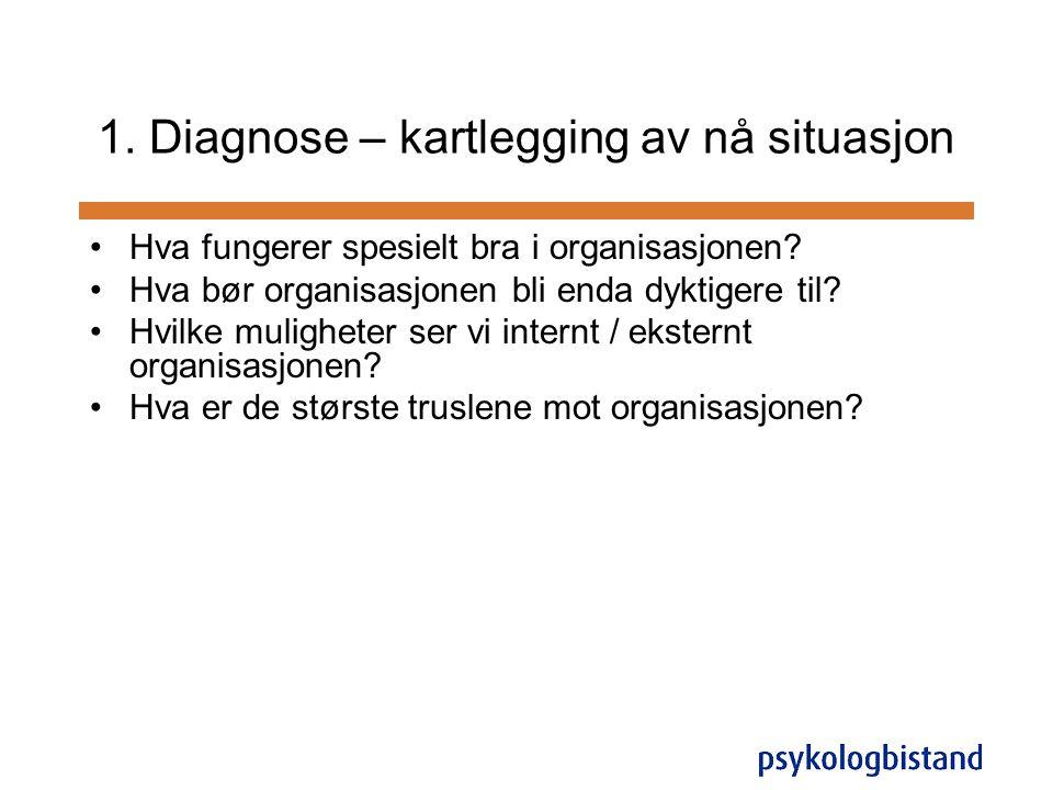 1. Diagnose – kartlegging av nå situasjon
