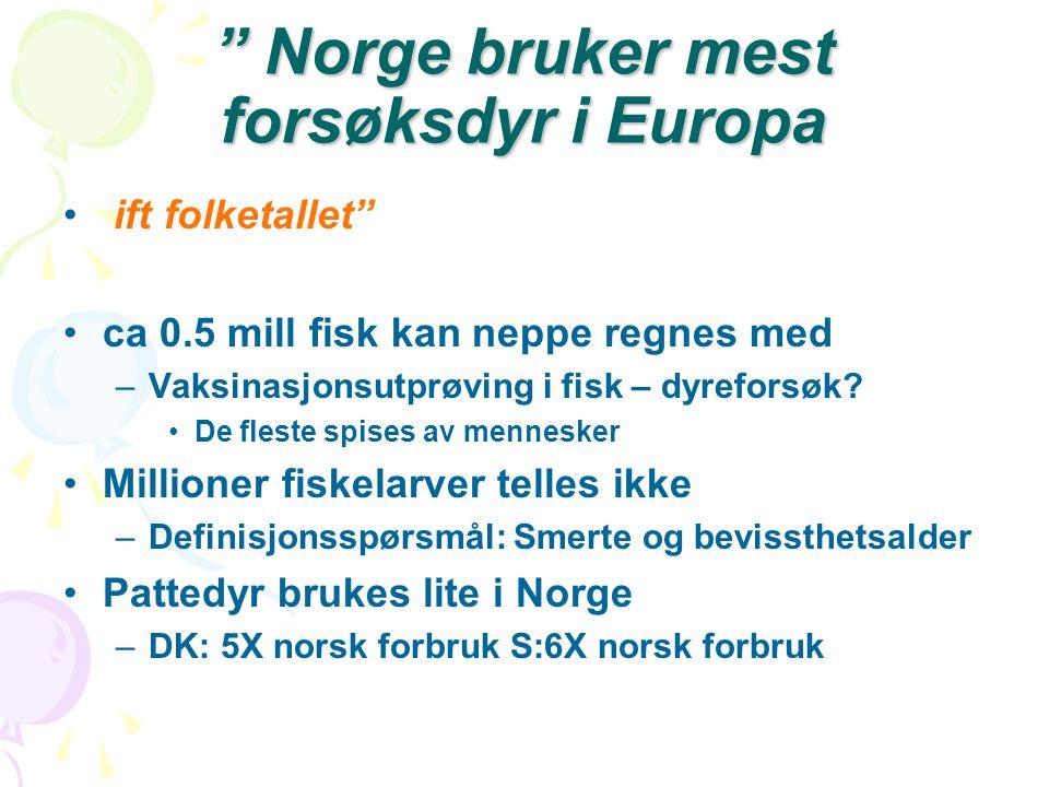 Norge bruker mest forsøksdyr i Europa