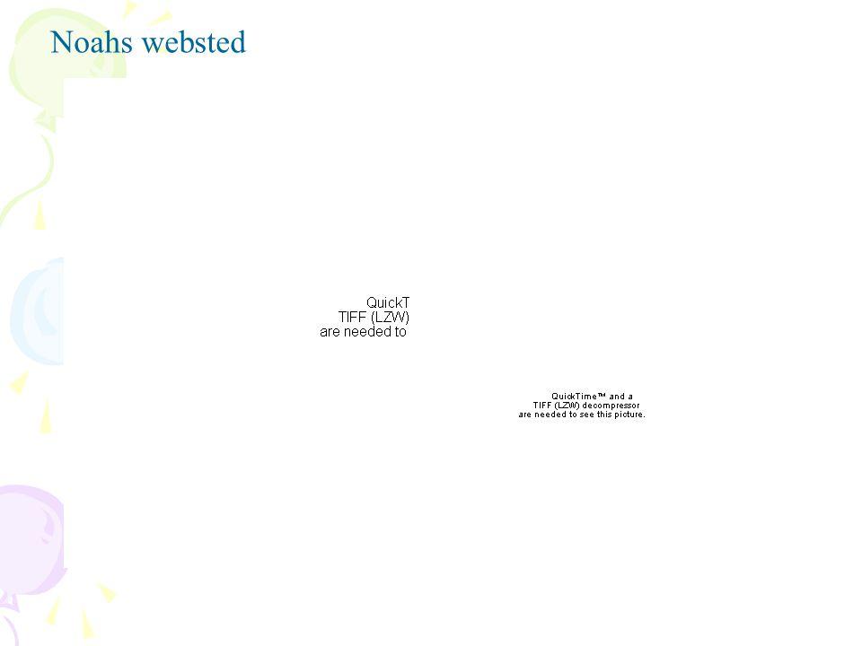 Noahs websted
