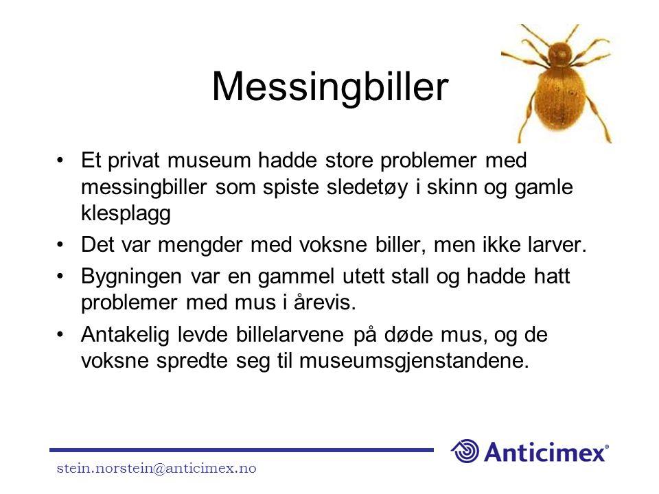 Messingbiller Et privat museum hadde store problemer med messingbiller som spiste sledetøy i skinn og gamle klesplagg.