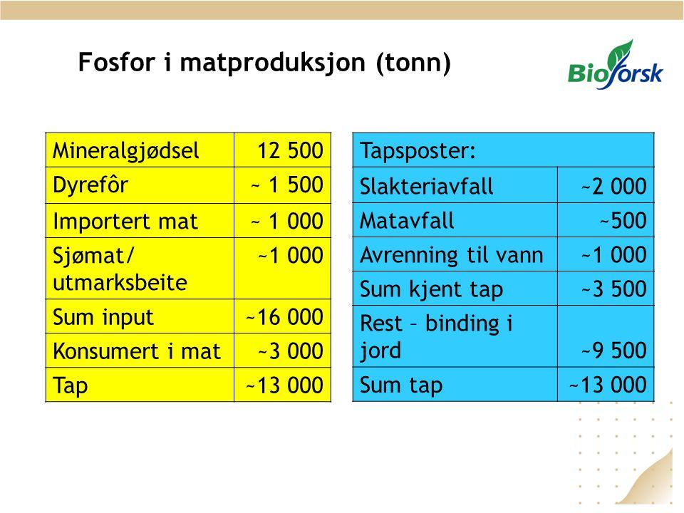 Fosfor i matproduksjon (tonn)