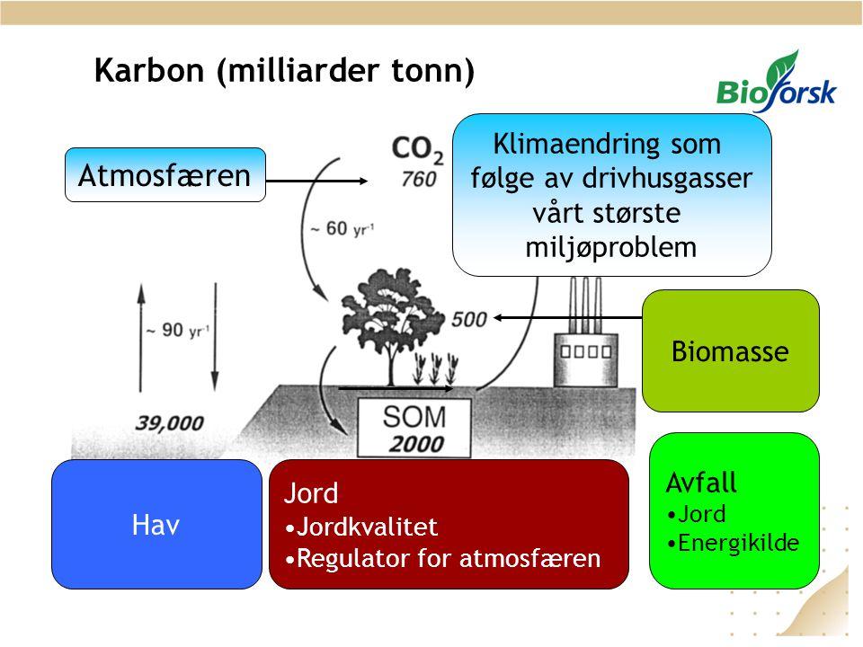 Karbon (milliarder tonn)
