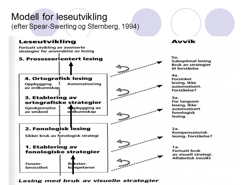 Modell for leseutvikling (efter Spear-Swerling og Sternberg, 1994)
