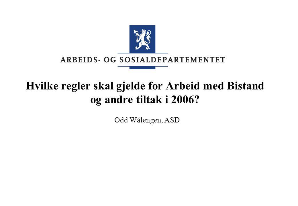 Hvilke regler skal gjelde for Arbeid med Bistand og andre tiltak i 2006