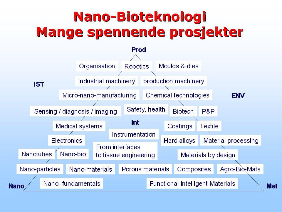 Nanobioteknologi er et ganske nytt felt