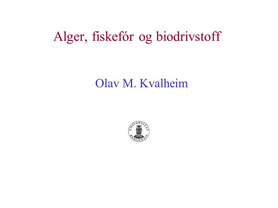 Alger, fiskefór og biodrivstoff