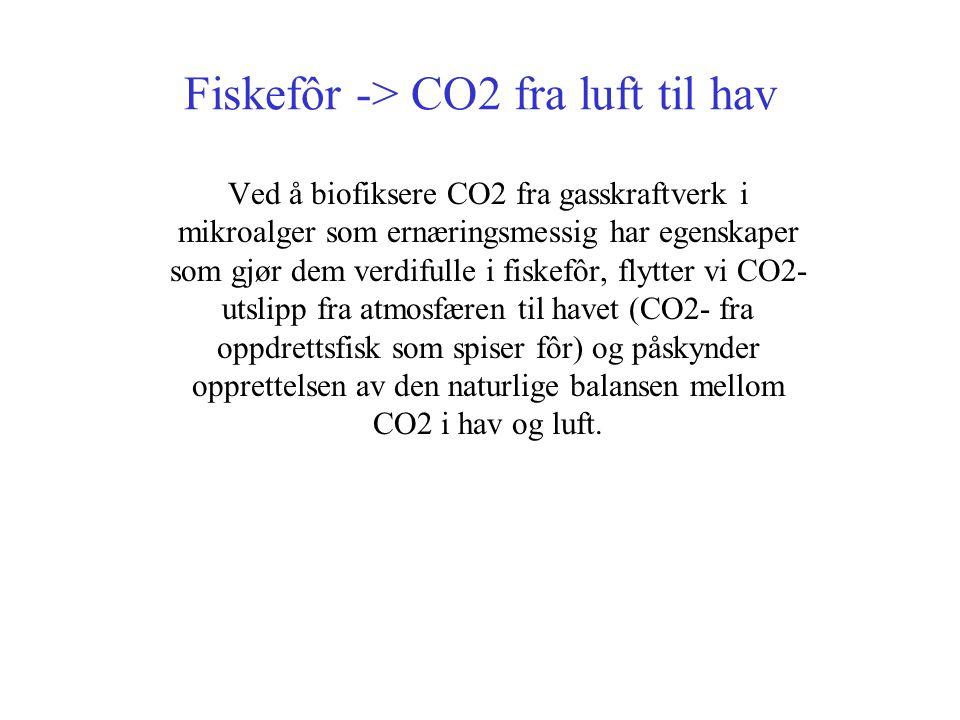 Fiskefôr -> CO2 fra luft til hav