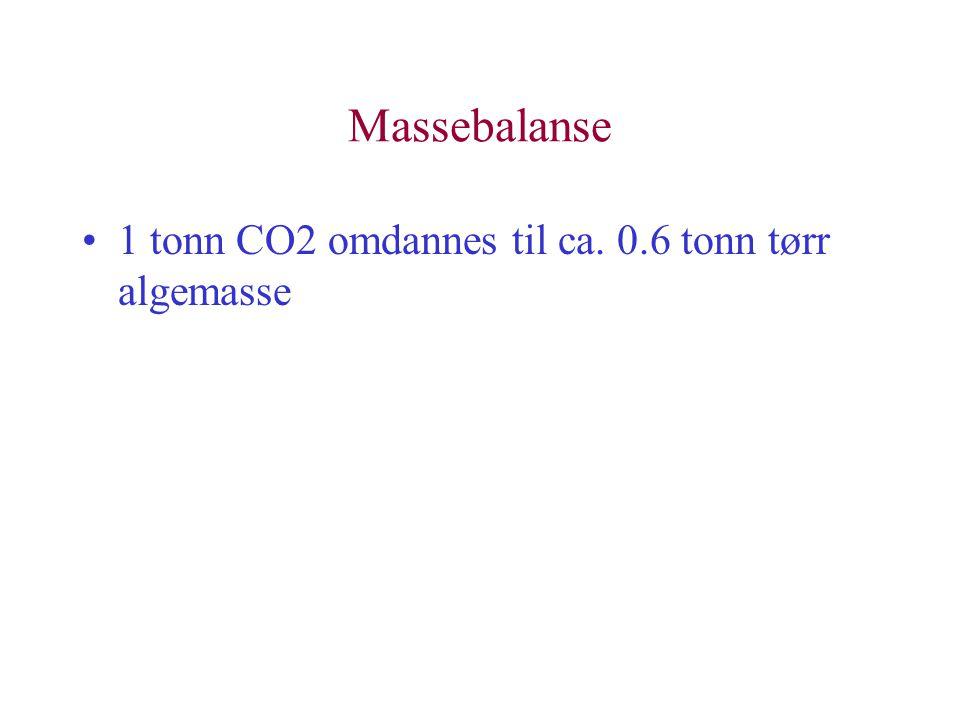 Massebalanse 1 tonn CO2 omdannes til ca. 0.6 tonn tørr algemasse