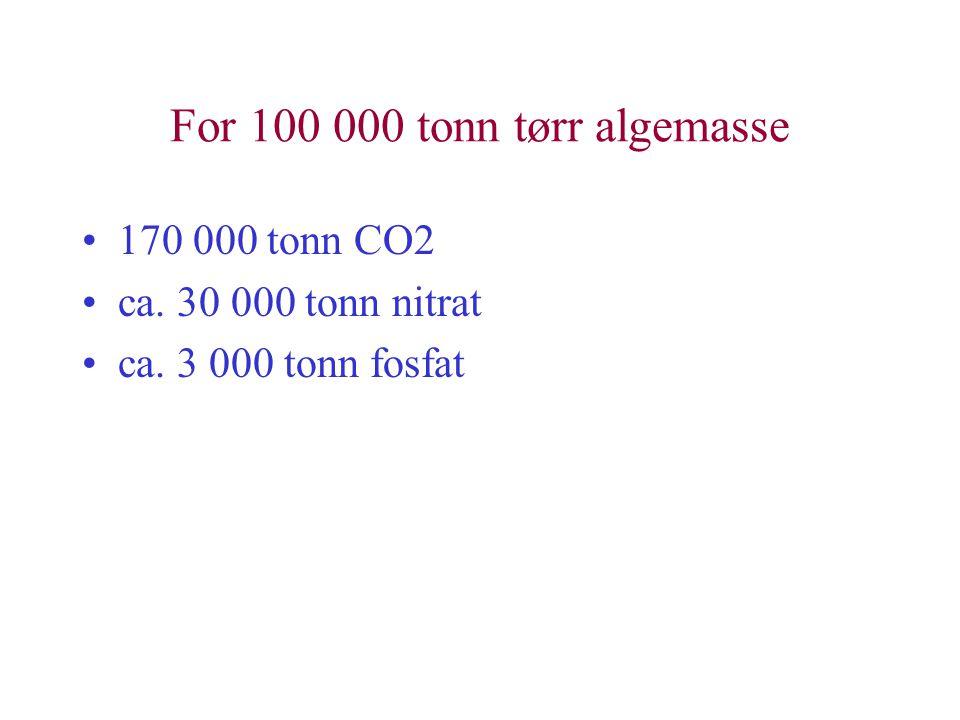 For 100 000 tonn tørr algemasse