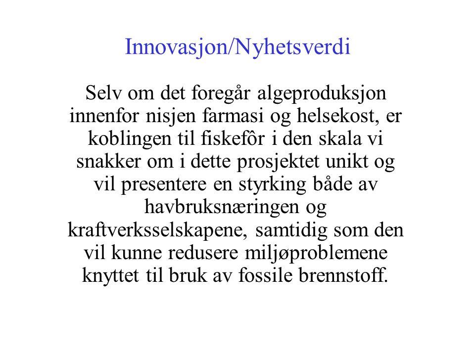 Innovasjon/Nyhetsverdi