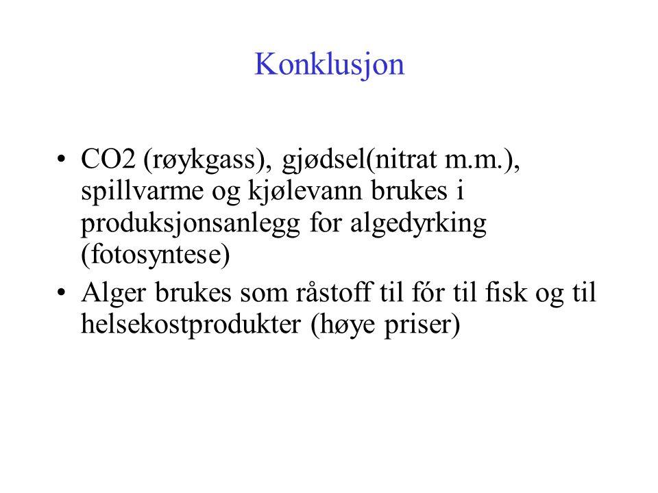 Konklusjon CO2 (røykgass), gjødsel(nitrat m.m.), spillvarme og kjølevann brukes i produksjonsanlegg for algedyrking (fotosyntese)