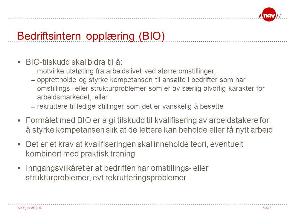 Bedriftsintern opplæring (BIO)