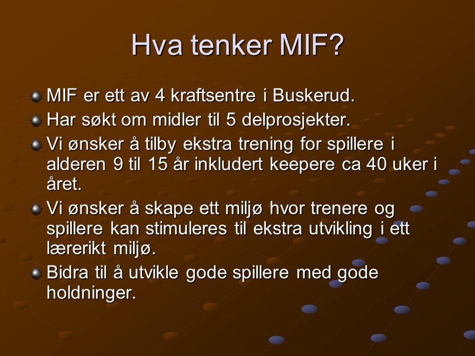 Hva tenker MIF MIF er ett av 4 kraftsentre i Buskerud.