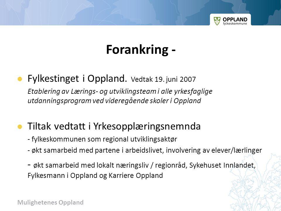 Forankring - Fylkestinget i Oppland. Vedtak 19. juni 2007