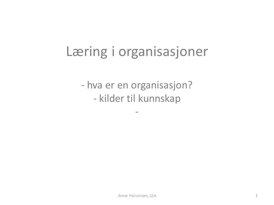 Læring i organisasjoner - hva er en organisasjon