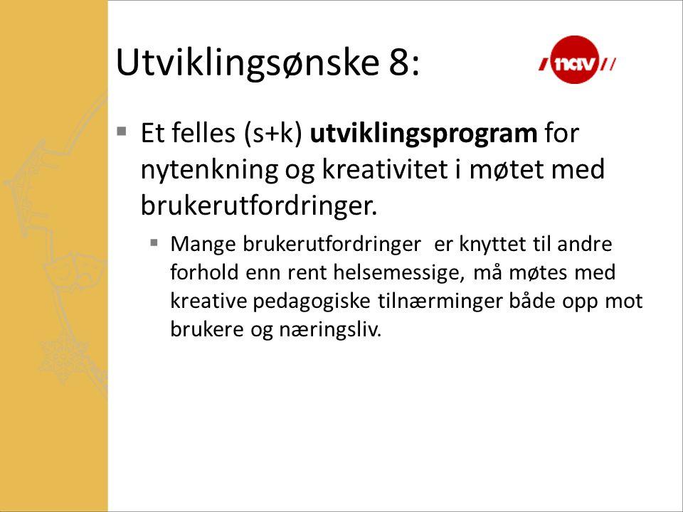 Utviklingsønske 8: Et felles (s+k) utviklingsprogram for nytenkning og kreativitet i møtet med brukerutfordringer.