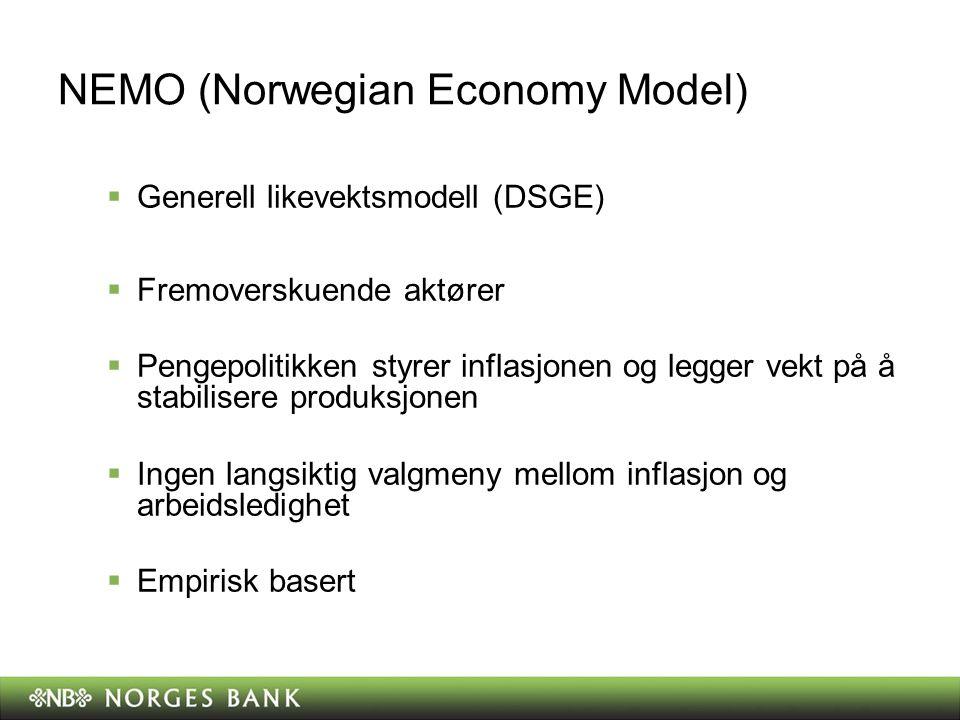 NEMO (Norwegian Economy Model)