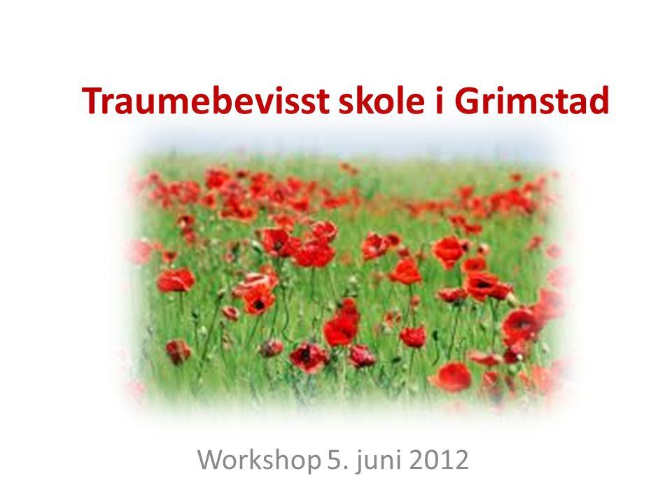 Traumebevisst skole i Grimstad