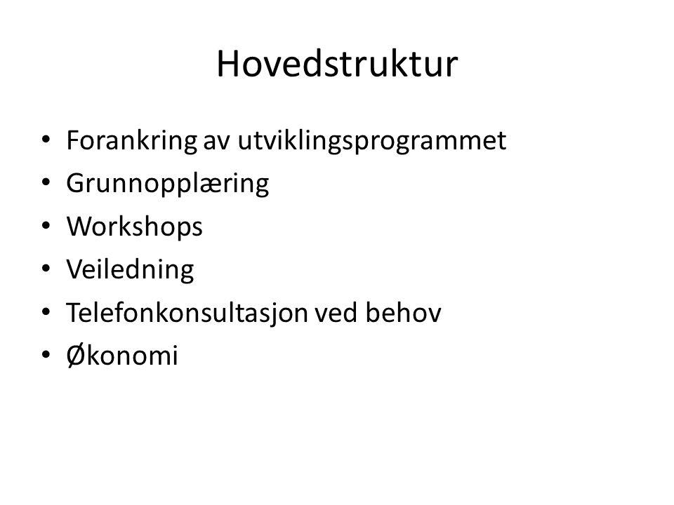Hovedstruktur Forankring av utviklingsprogrammet Grunnopplæring
