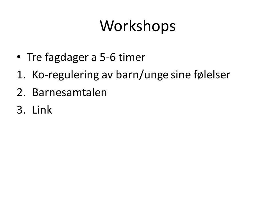 Workshops Tre fagdager a 5-6 timer