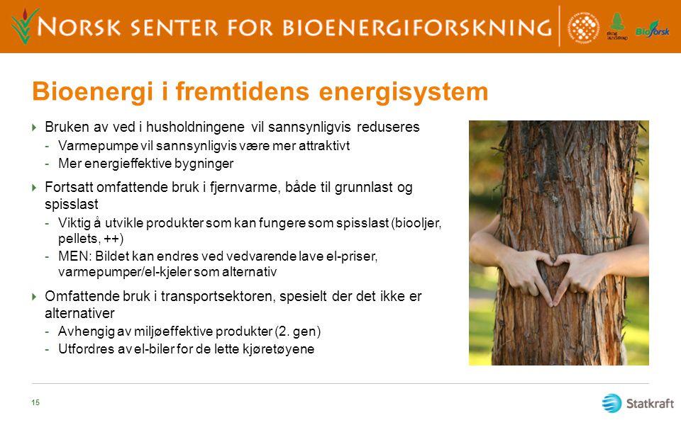 Bioenergi i fremtidens energisystem