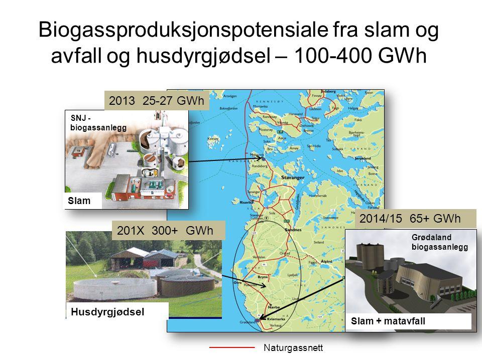 Biogassproduksjonspotensiale fra slam og avfall og husdyrgjødsel – 100-400 GWh