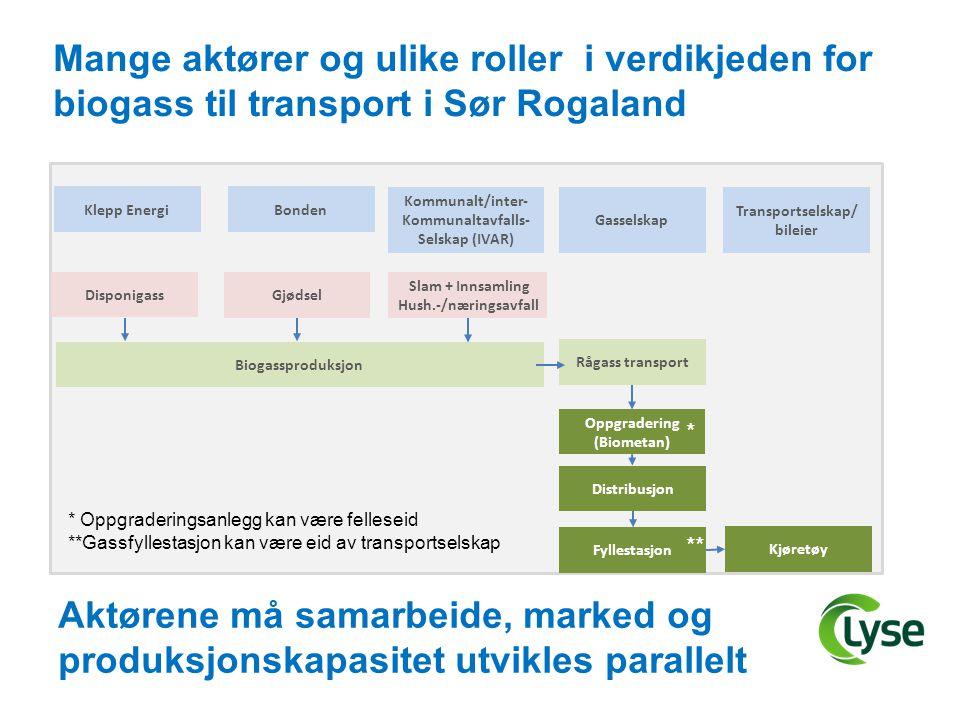 Transportselskap/bileier