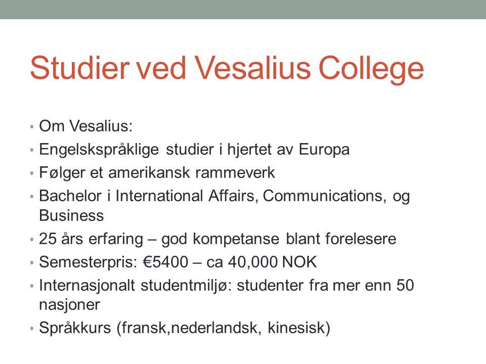 Studier ved Vesalius College