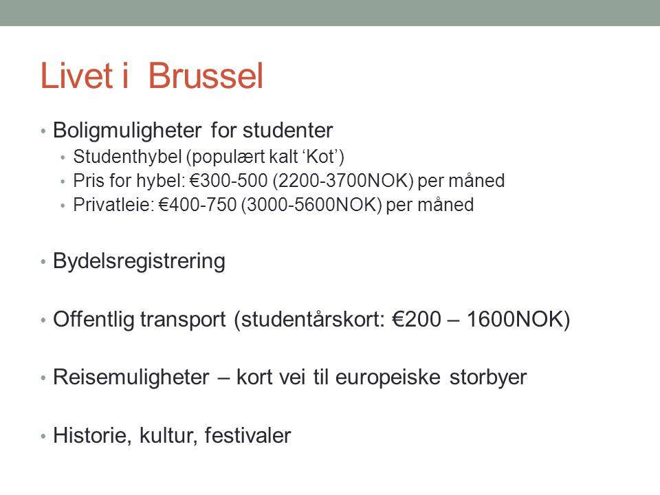 Livet i Brussel Boligmuligheter for studenter Bydelsregistrering