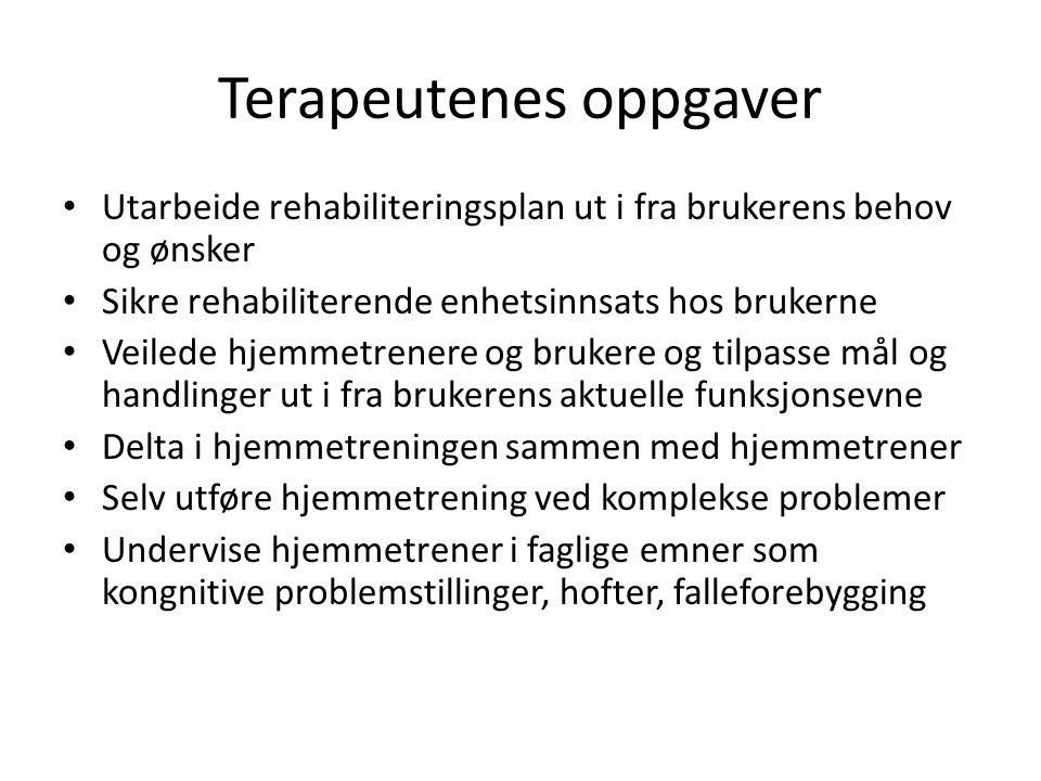 Terapeutenes oppgaver