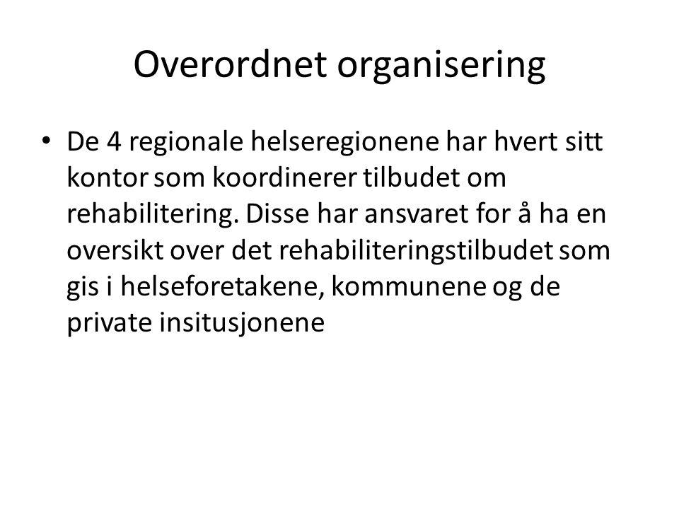 Overordnet organisering