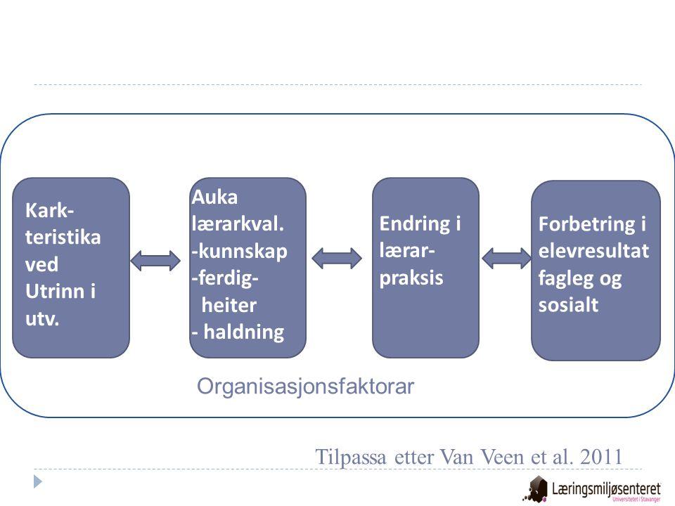 Organisasjonsfaktorar