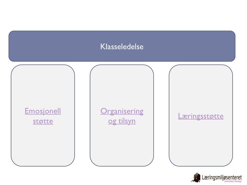 Organisering og tilsyn