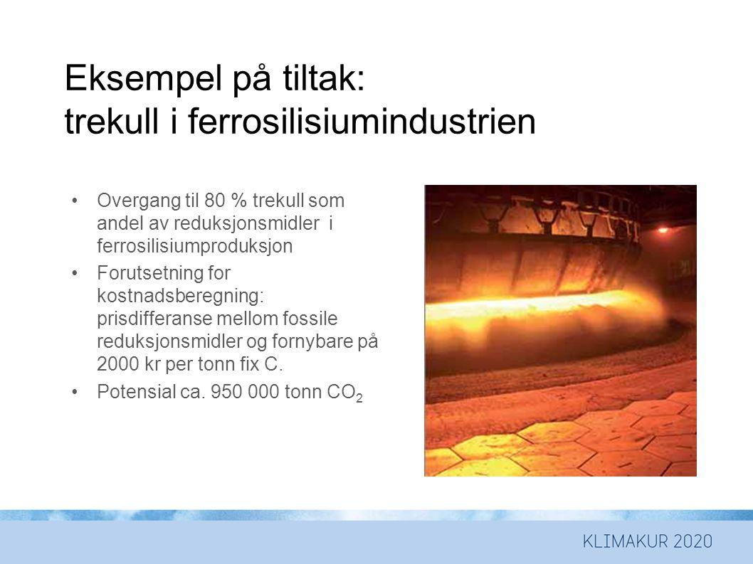 Eksempel på tiltak: trekull i ferrosilisiumindustrien