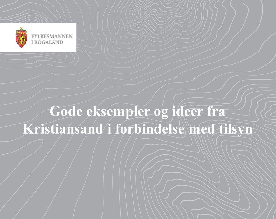 Gode eksempler og ideer fra Kristiansand i forbindelse med tilsyn