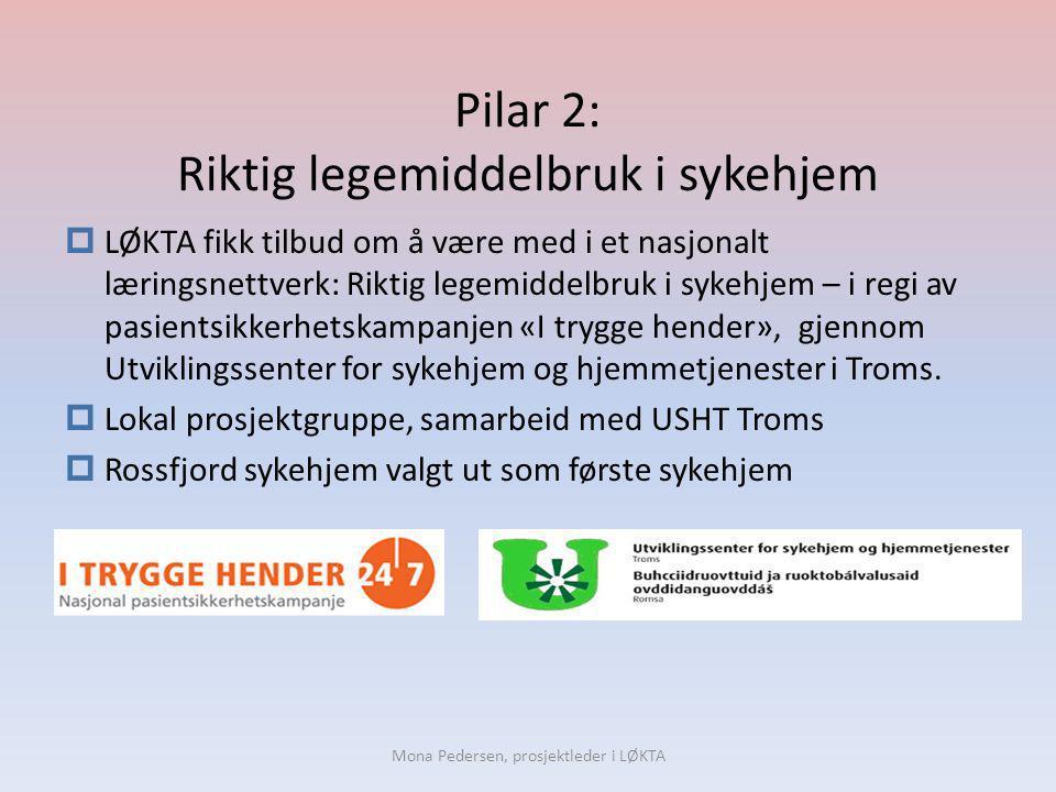 Pilar 2: Riktig legemiddelbruk i sykehjem