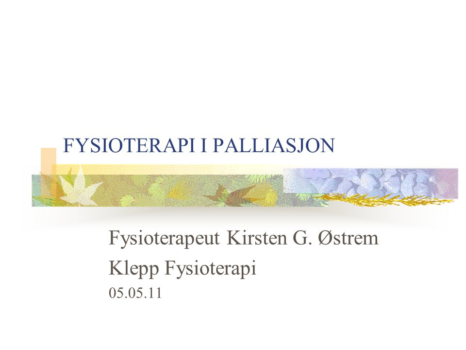 FYSIOTERAPI I PALLIASJON