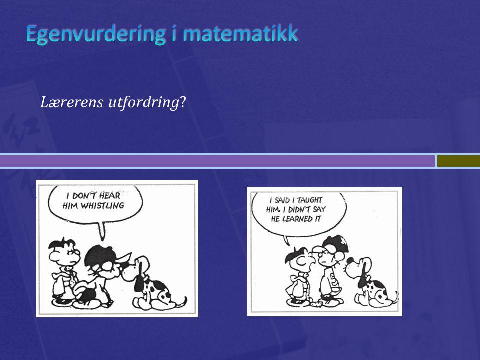 Egenvurdering i matematikk