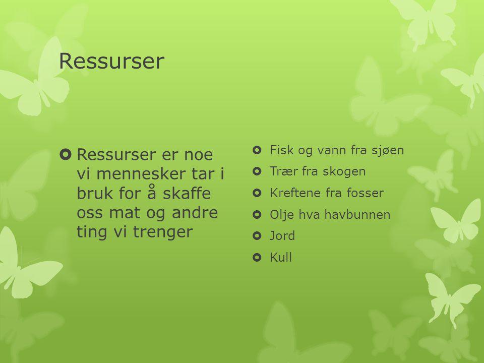 Ressurser Ressurser er noe vi mennesker tar i bruk for å skaffe oss mat og andre ting vi trenger.